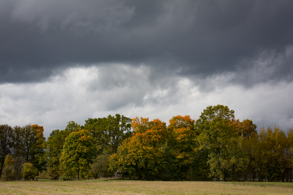 Autumn colours and coming storm