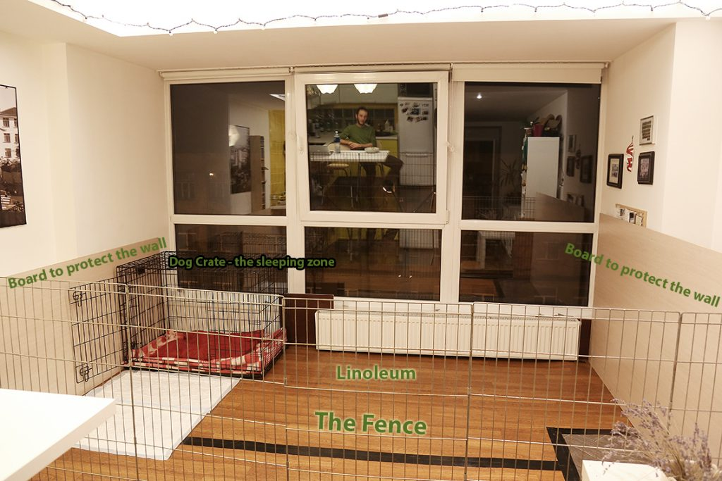 Plexiglass Dog Kennel