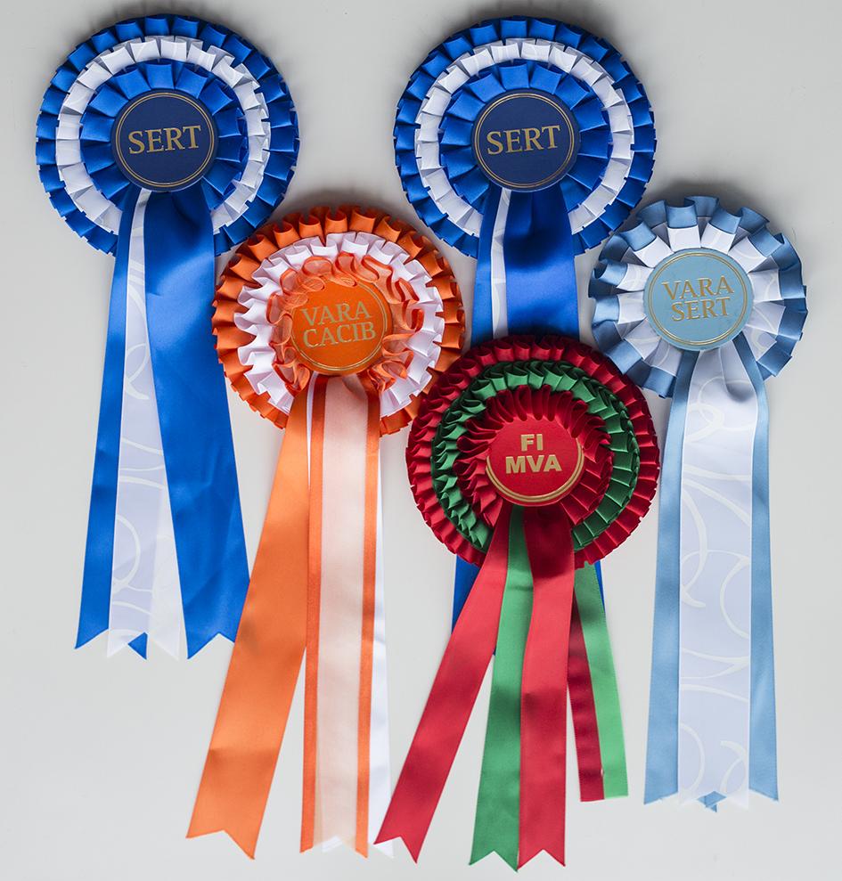 GA2A0178_FIN_prizes