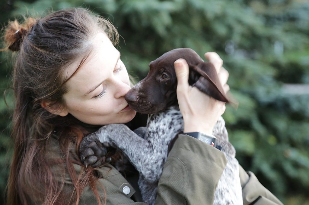 Bringing Home A Puppy The Complete Guide German Shorthaired Pointer Blog